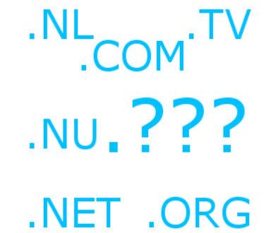 Domein naam extensie .nl .com .org Labweb.nl, website maken