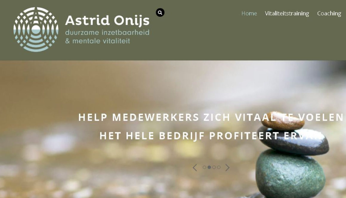 Portfolio Labweb.nl, astridonijs.nl, website maken